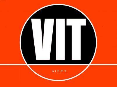 VIT.pt
